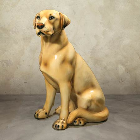 Intrada Labrador Retriever Retriever