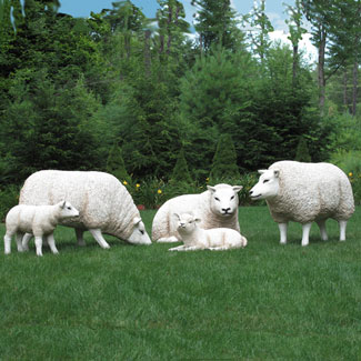 Life Size Sheep & Lamb Set - 5 Piece