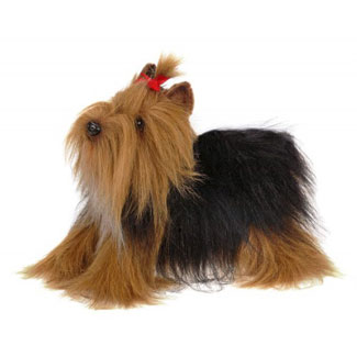 Plush Yorkshire Terrier