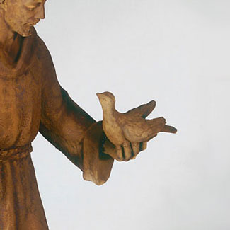 St. Francis hand