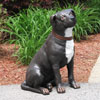 "View: Life Size Staffordshire Terrier 21.5""H"