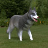 "View: Life Size Husky Dog 32""H"