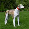 "View: Life Size Whippet Dog Statue 26""H"