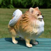"View: Life Size Pomeranian Dog Statue 14""H"