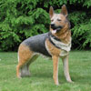 "View: Life Size German Shepherd 39""H"