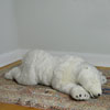 "View: Polar Bear Cub Sleeping 40.5""L"