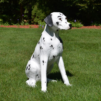 Dalmatian Dog Statue 22 8 Inches Tall